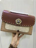Coach AAA Quality Bag (2)