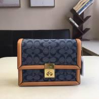 Coach AAA Quality Bag (13)