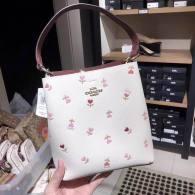 Coach AAA Quality Bag (8)
