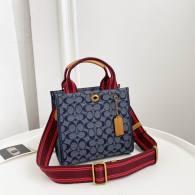 Coach AAA Quality Bag (11)