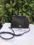 Coach AAA Quality Bag (7)