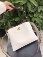 Coach AAA Quality Bag (27)