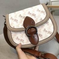 Coach AAA Quality Bag (23)