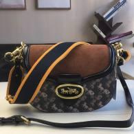 Coach AAA Quality Bag (19)