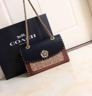 Coach AAA Quality Bag (18)