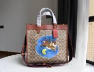 Coach AAA Quality Bag (25)