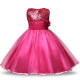 Girl Sequins Tulle Flower Princess Dresses