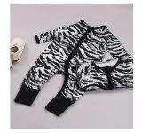 Baby Boy Zip-Up Zebra Print Cotton Long Sleeve One piece