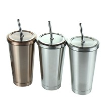 Insulated Stainless Steel Tumbler Straw Cup Vacuum Water Bottles