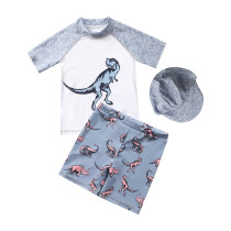 Kid Boys Print Grey Dinosaurs Swimsuit Tow Pieces With Swim Cap