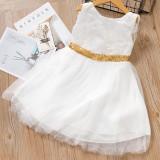 Toddler Girls Gold Sequins Bowknot Sleeveless Lace Tutu Dress
