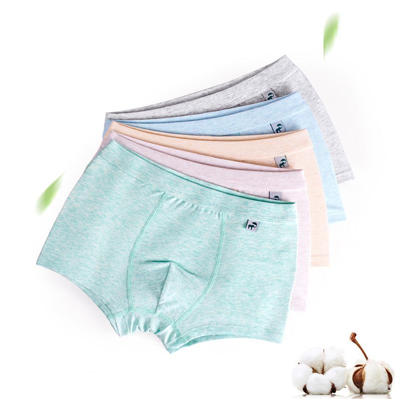 Kid Boys 2 Packs Boxer Briefs Cotton Underwear