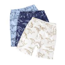 Toddler Boys Print Dinosaurs Cotton Summer Beach Shorts