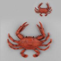 Educational Realistic Sea Crab Underwater World Marine Life Figures Playset Toys