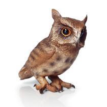 Educational Realistic Owl Birds Model Figures Playset Toys