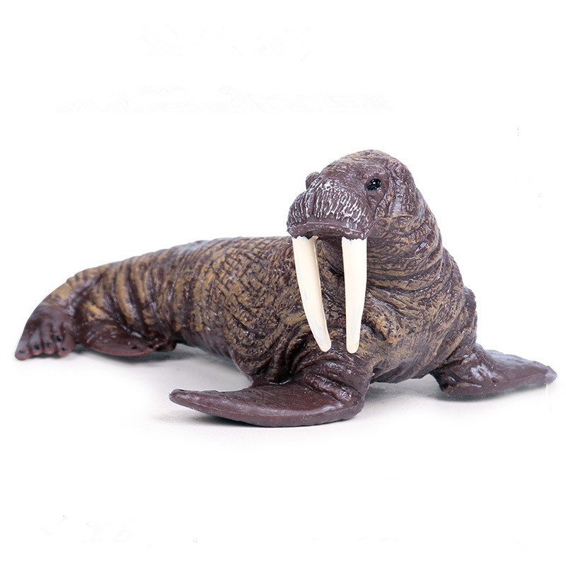 Educational Realistic Ocean Walrus Model Figures Playset Toys