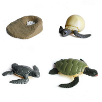 Educational Realistic Turtles Frogs Growth Development Process Model Figures Playset Toys