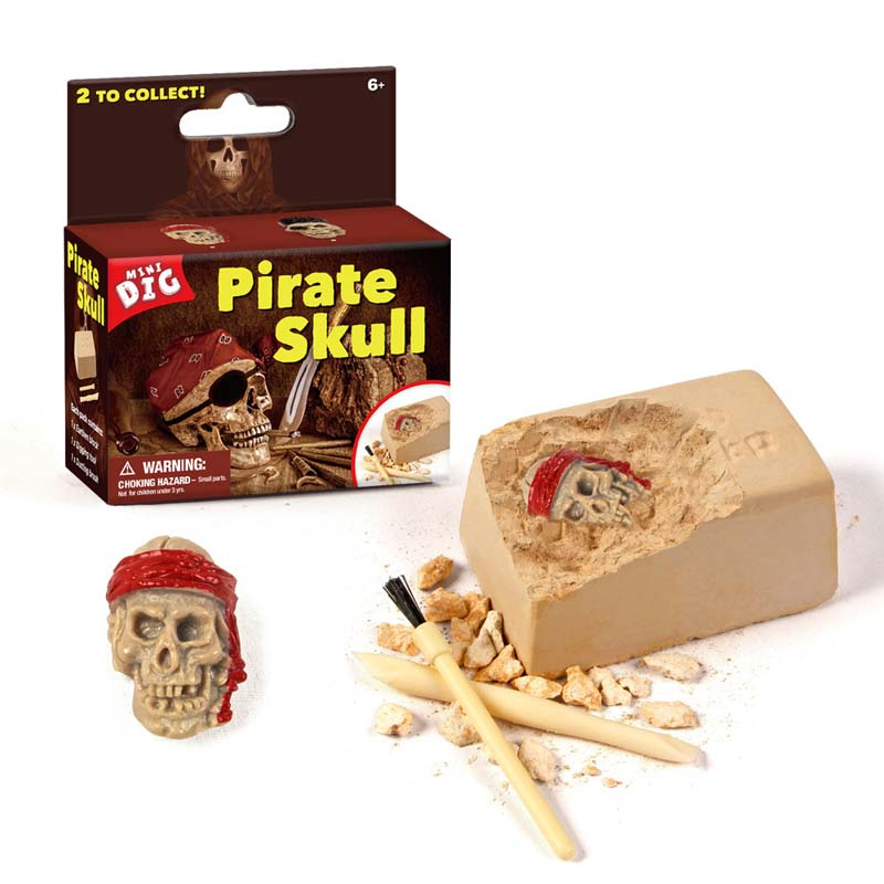 Pirate Skull Discovery Dig Kit Science Education Toys For Kids Teens