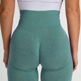 Women Seamless Yoga Leggings Sports Fitness Pants Moisture Absorption Tummy Control Running Stretch Workout Pants