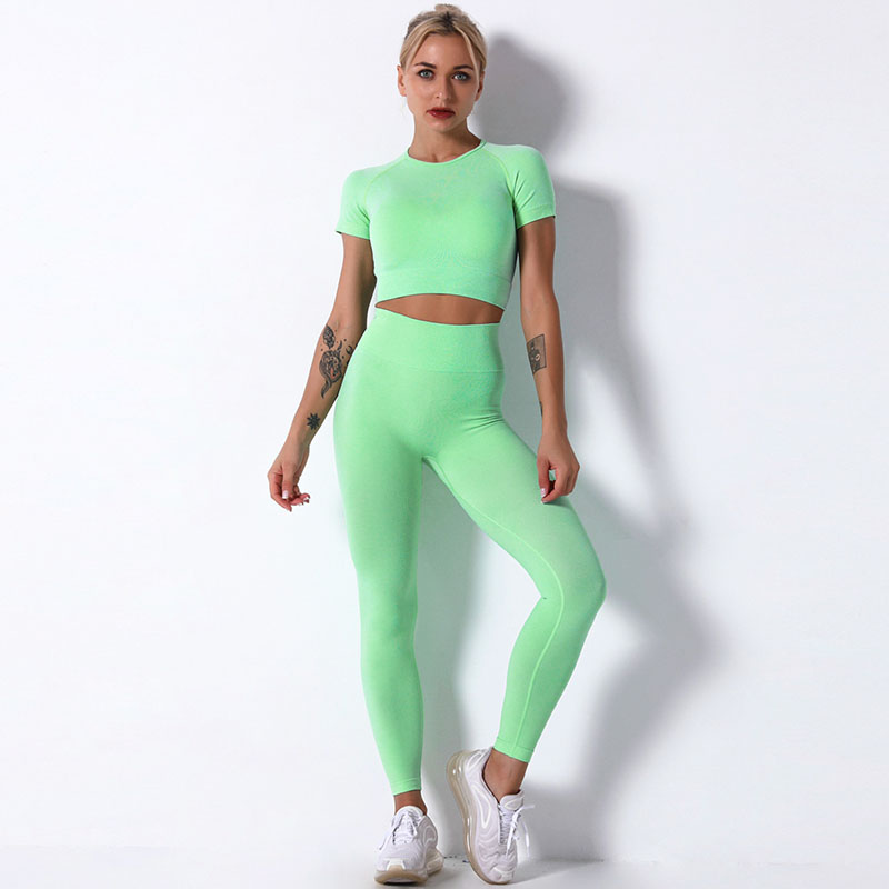 Women Seamless Knit Workout Fitness Short Sleeve And Tight Yoga Leggings Sets
