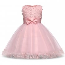 Kid Girl 3D Lace Embroidered Flowers Bowknot Mesh Gowns Party Dresses
