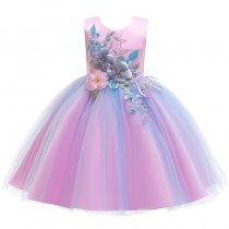 Kid Girl Bowknot 3D Lace Embroidery Pearls Flowers Mesh Wedding Party Dresses