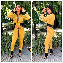 Fashion Women Track Suits Zipper Jacket Elastic Pants YYZ911