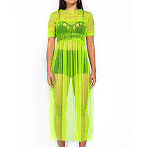 Green Casual Mesh See Throuth Solid Long Dress QZ4064