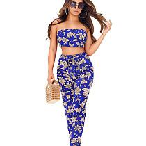 Verão Floral Imprimir Bandeau Tops Calças Casuais Conjuntos QQ5033
