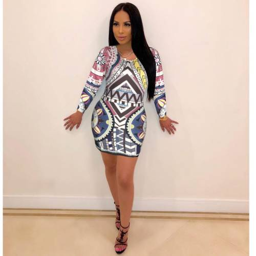 Autumn Long Sleeves Bodycon Mini Print Dress E8172