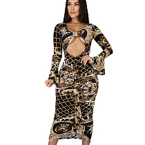 Ruffle Sexy Hollow Out Slim Irregular Transparent Printing Dress MY9555