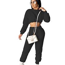 黒のトレンディな女性秋冬弾性ウエストパンツスーツSDD9208