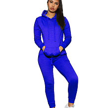 Blue Fashion Women's Plain Color Long Sleeves Hooded Casual Tacksuits Q402