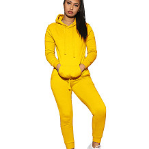 Yellow Fashion Women's Plain Color Long Sleeves Hooded Casual Tacksuits Q402