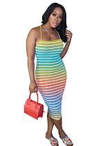 Zebra do arco-íris Skinny Cami Dress OMY8036