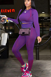 Purple Casual Polyester Long Sleeve Round Neck Tee Top Long Pants Sets QQM4087