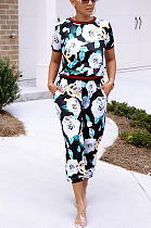 Casual Sexy Simplee Floral Short Sleeve Round Neck Pants Sets SMR9747