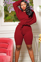 Fashion Casual Women's Clothing Pure Color Long Sleeve Ruffle Two-Piece  RZ1039