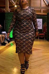 Night Out Sexy Fish Scales Graphic Long Sleeve Round Neck Midi Dress CCY1329