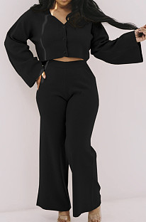 Loose And Casual Wide Leg Pants With Loose Sleeves Two-Piece Set FH124