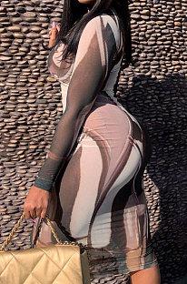 Robe à manches longues à impression irrégulière Sexy Perspective ZNN8013