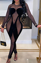 Sexy Long Sleeve Cultivate One's Morality Flannelette  Zipper Perspective Mesh Jumpsuit CCY8852