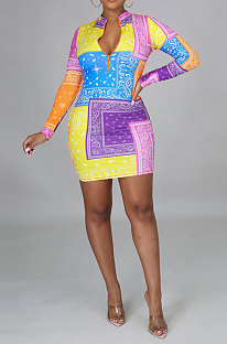 Sexy Short Style Package Buttocks Long Sleeve Digital Printing Zipper Plus Mini Dress CCY8866
