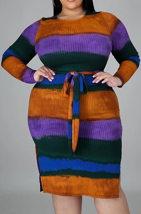 Fashion Pit Strip Stripe Printing Frenulum Dresses QZ5275