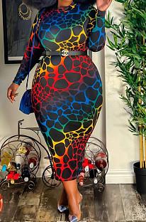 Euramerican Fat Woman Digital Printint Dress QZ5276