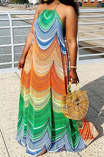 Красочное длинное платье без рукавов с вырезом на шее QZW136