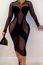Sexy Net Yarn Perspective Stretch Long Sleeve Dress SMR10055