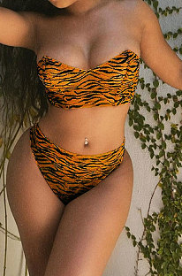 Tiger Pattern Sexy Trendy Casual Two Pieces Swimsuits AFM2030