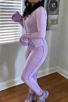 Purple Flare Long Sleeve Irregularity Top Long Pant Casual Sets LSZ9033-2