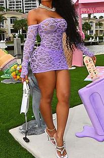 Light Purple Perspective Mesh Sexy Strapless Long Sleeve Bodycon Mini Dress DN8625-3